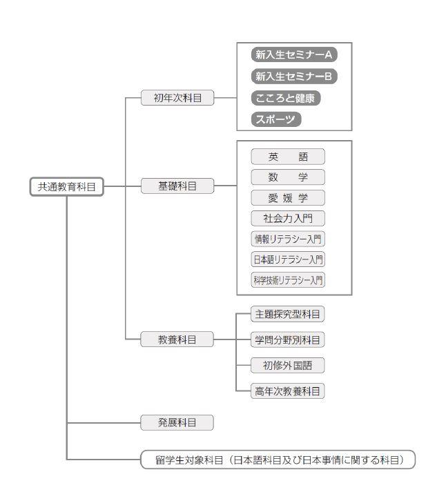 H28共通教育カリキュラム図