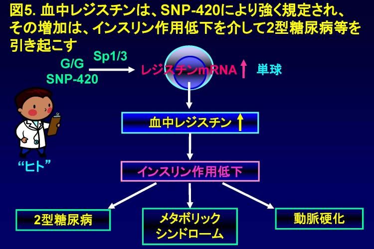 Infinity図大澤fin sent 6.15.2014_ページ_5