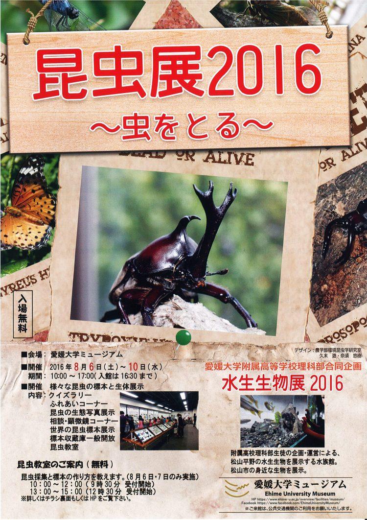 昆虫展2016-01