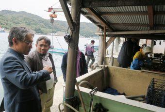 愛南町の真珠養殖場を視察する一行