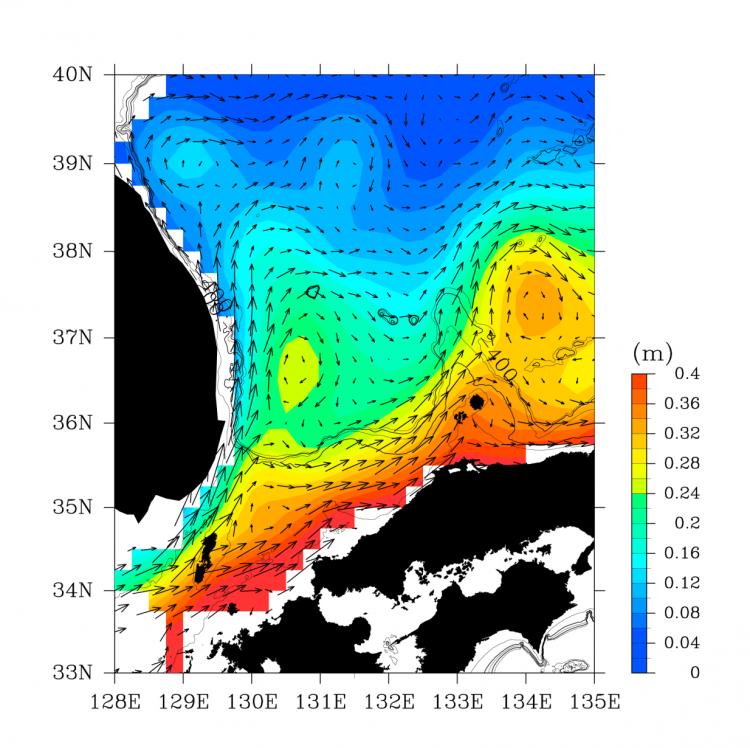 人工衛星データから計算した日本海南西海域の海流の図です
