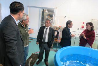 南予水産研究センター西浦ステーションを視察